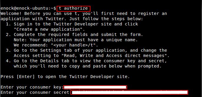 twitter_keys