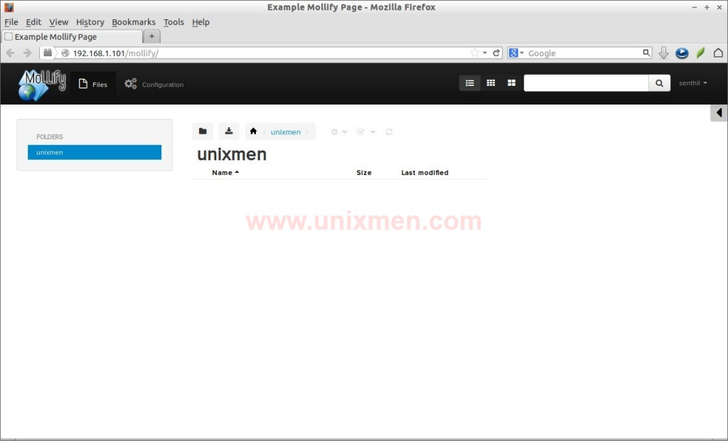 Example Mollify Page - Mozilla Firefox_007