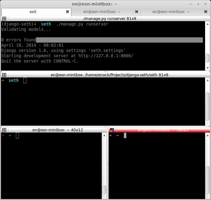 Terminator_Linux_Mint